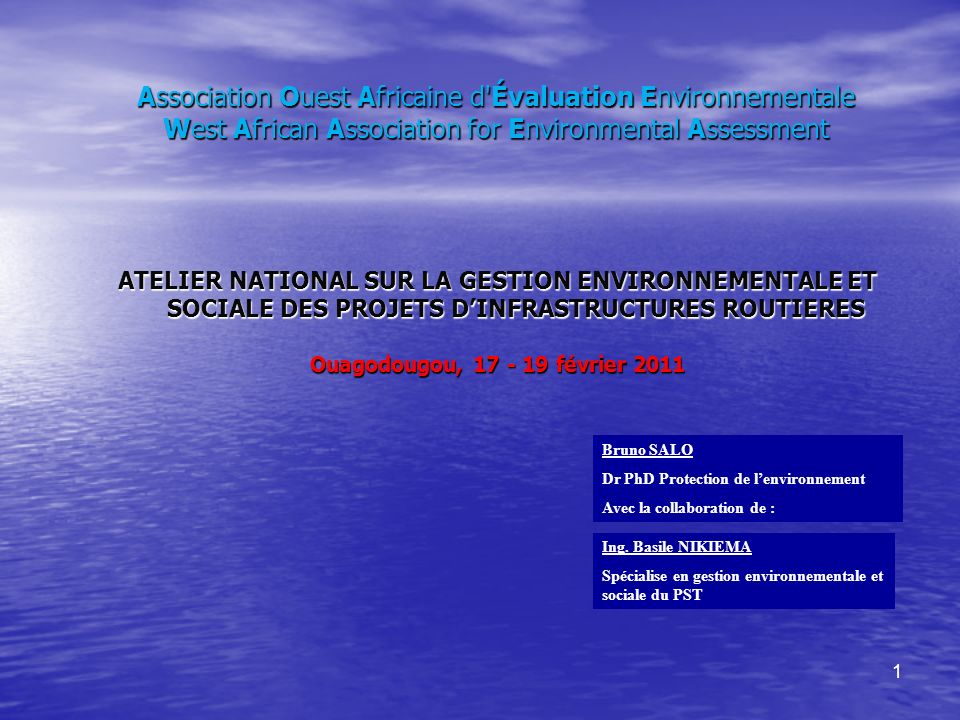 Association Ouest Africaine d Évaluation Environnementale West African Association for Environmental Assessment