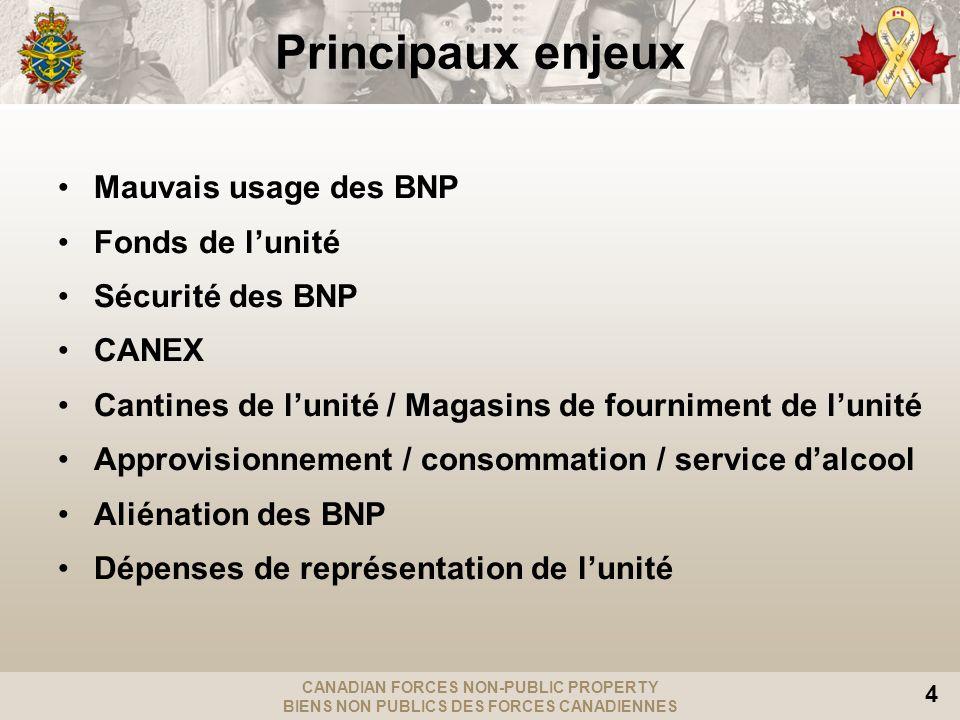 Principaux enjeux Mauvais usage des BNP Fonds de l'unité