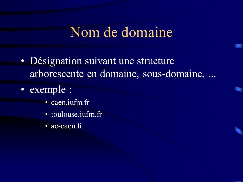 Nom de domaine Désignation suivant une structure arborescente en domaine, sous-domaine, ... exemple :