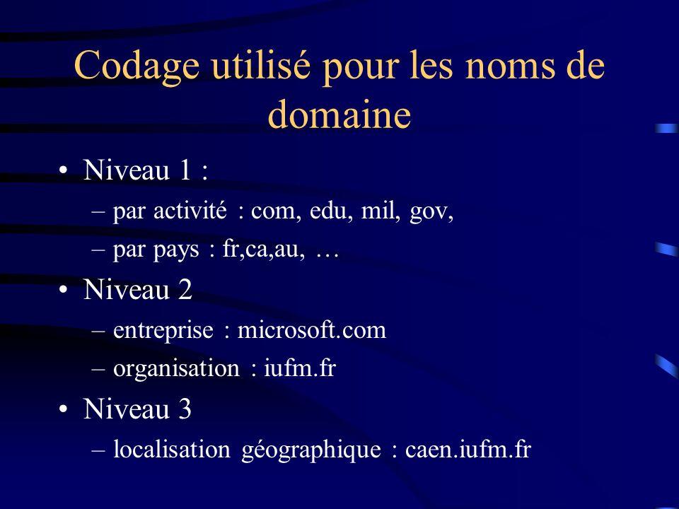 Codage utilisé pour les noms de domaine