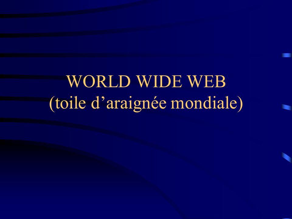 WORLD WIDE WEB (toile d'araignée mondiale)