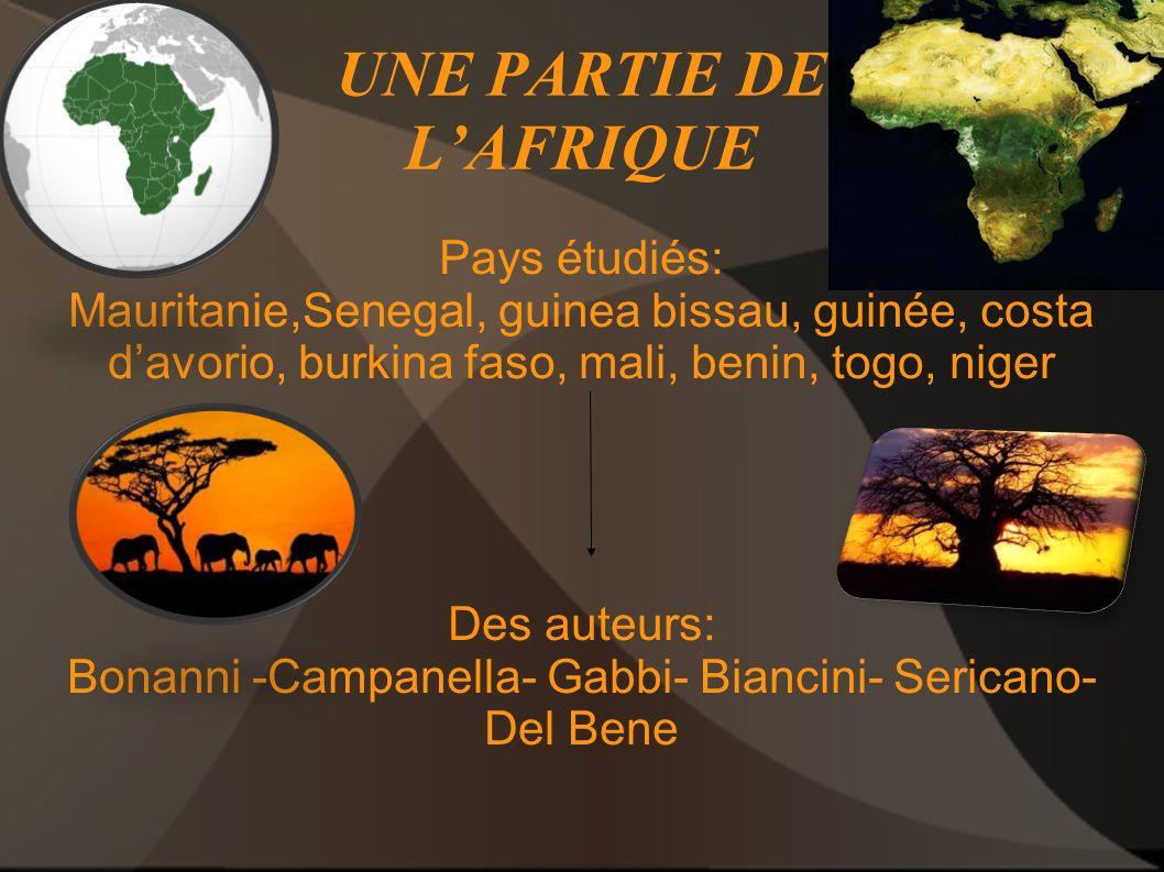 UNE PARTIE DE L'AFRIQUE