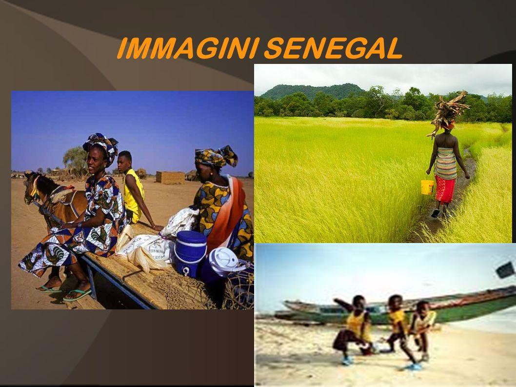 IMMAGINI SENEGAL