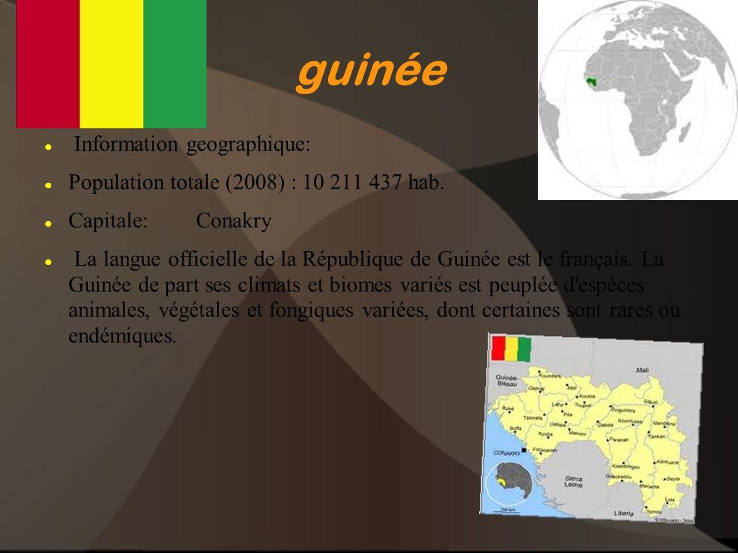 guinée Information geographique:
