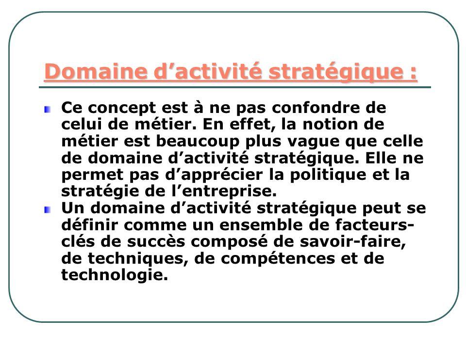Domaine d'activité stratégique :