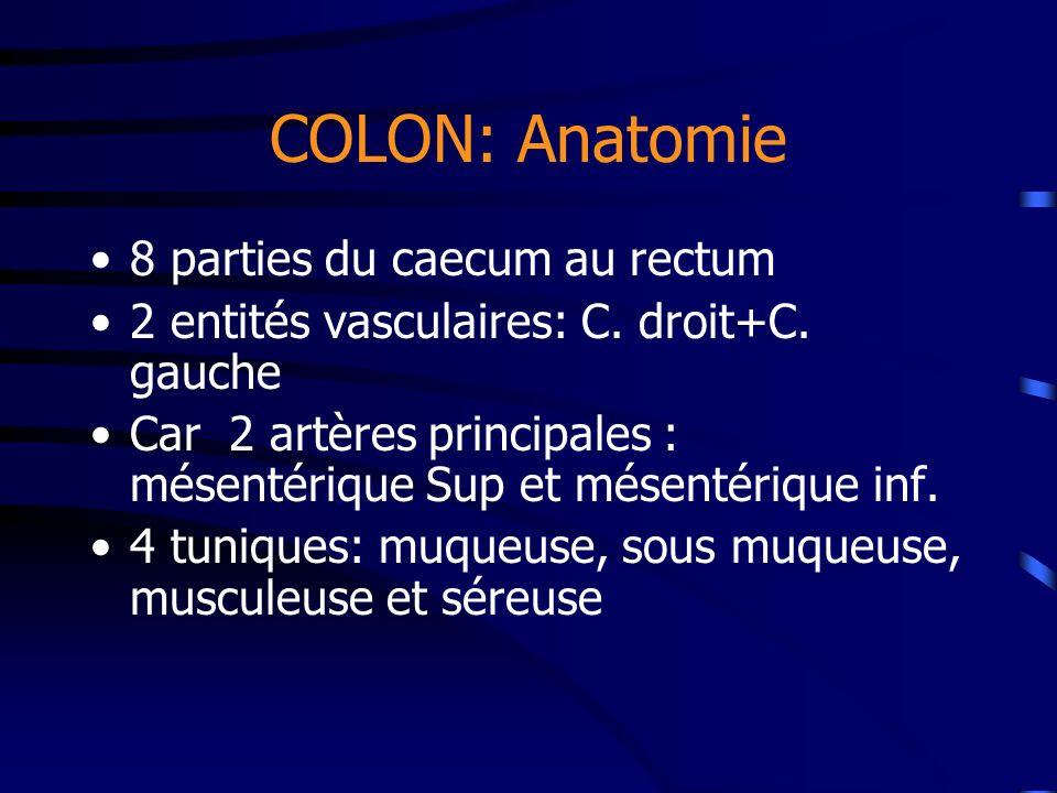 COLON: Anatomie 8 parties du caecum au rectum