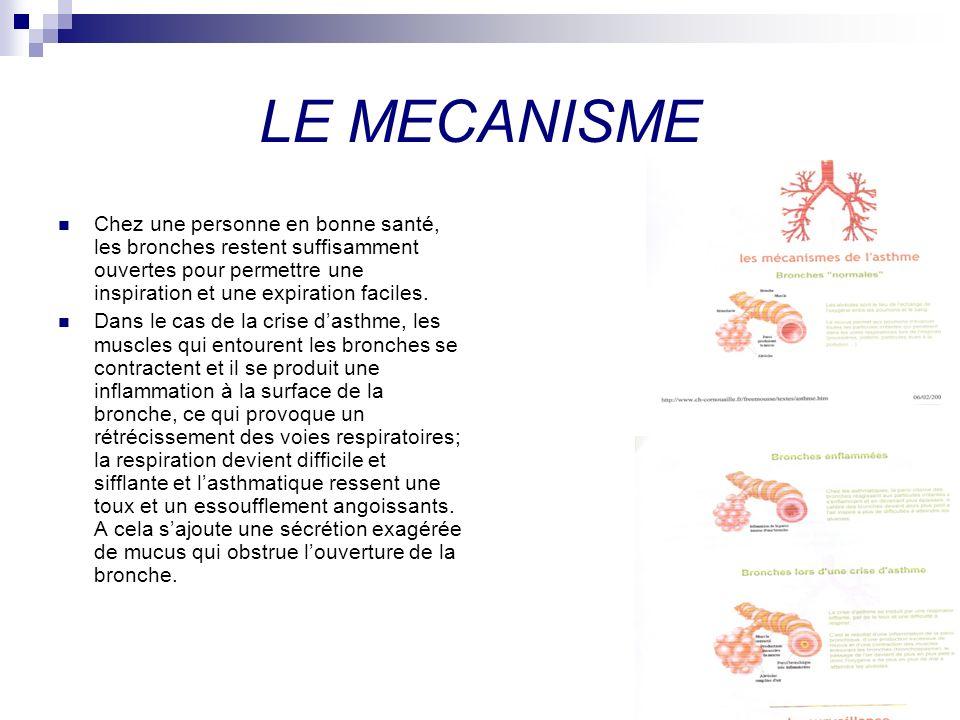 LE MECANISME Chez une personne en bonne santé, les bronches restent suffisamment ouvertes pour permettre une inspiration et une expiration faciles.