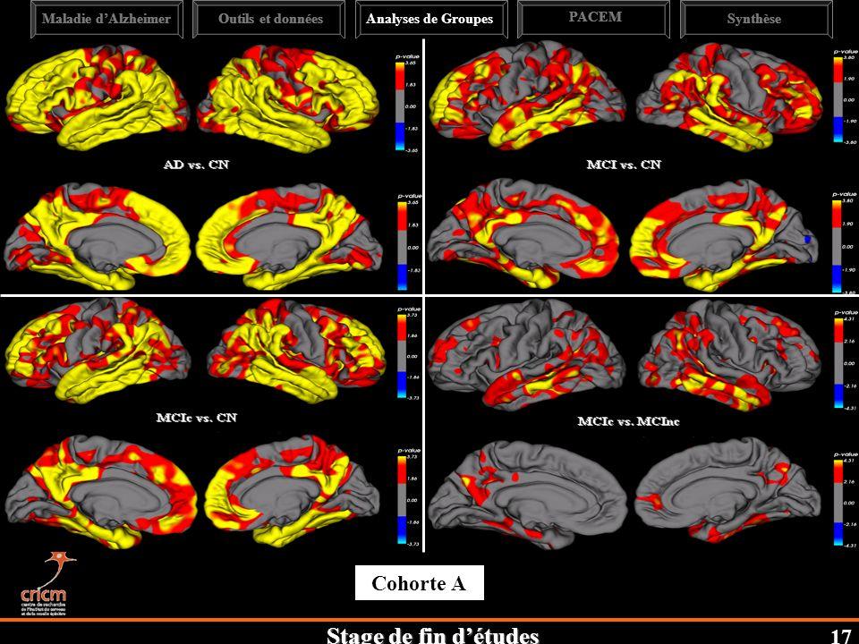 Cohorte A 17 Maladie d'Alzheimer Outils et données Analyses de Groupes
