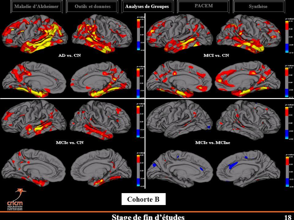 Cohorte B 18 Maladie d'Alzheimer Outils et données Analyses de Groupes