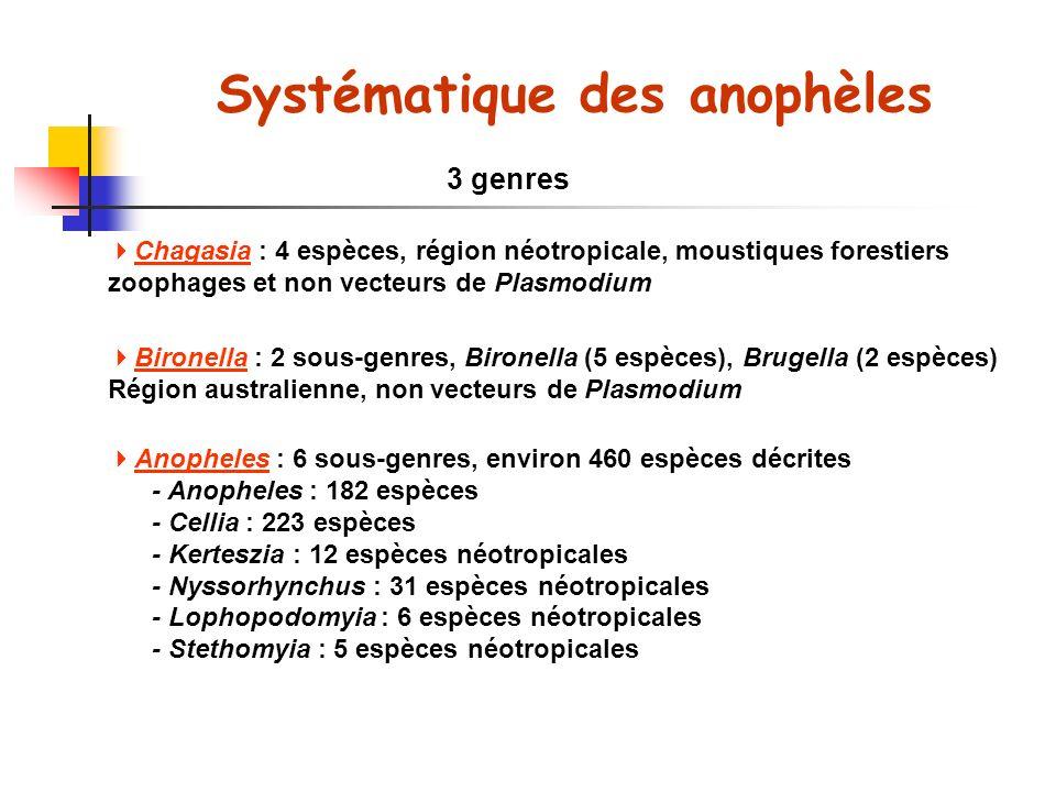 Systématique des anophèles
