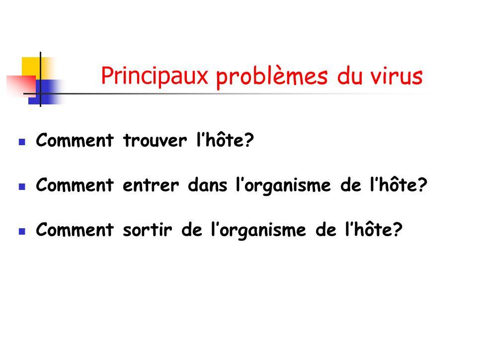Principaux problèmes du virus