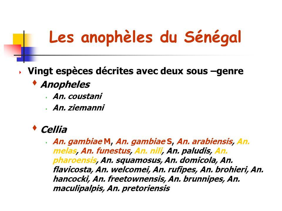 Les anophèles du Sénégal