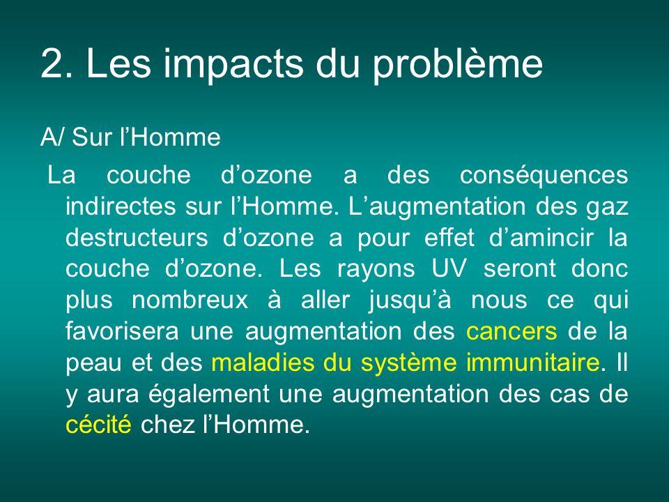 2. Les impacts du problème