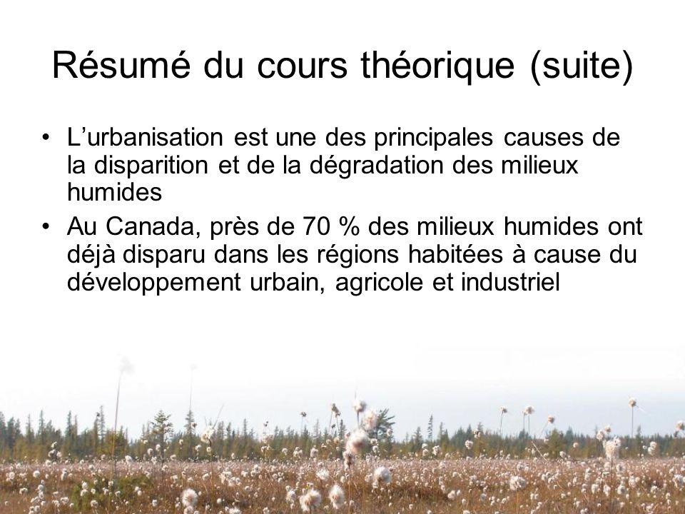 Résumé du cours théorique (suite)