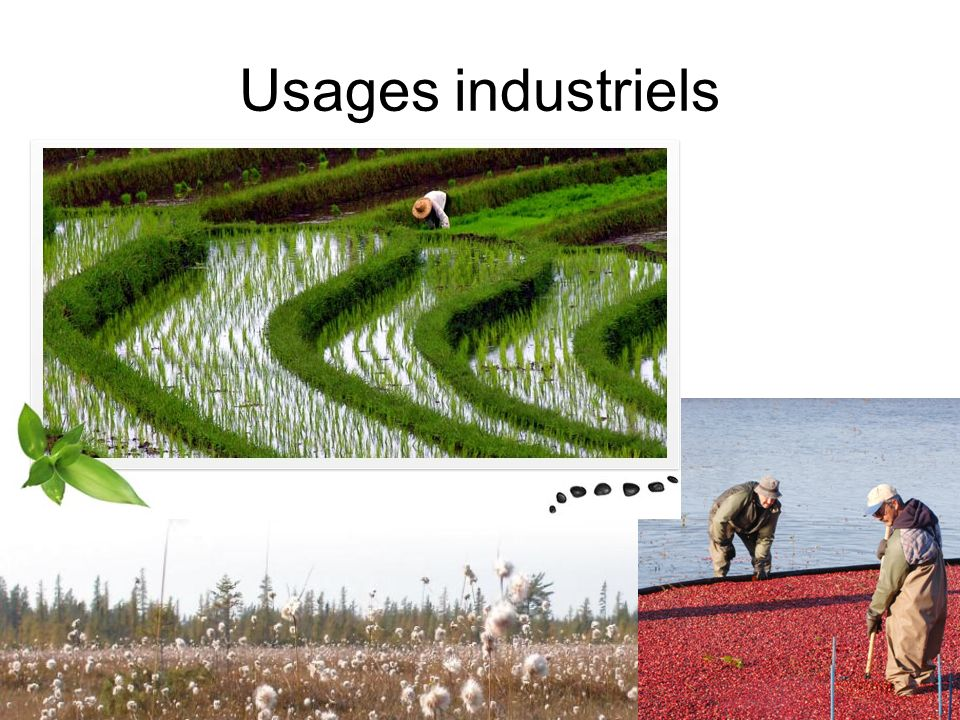 Usages industriels