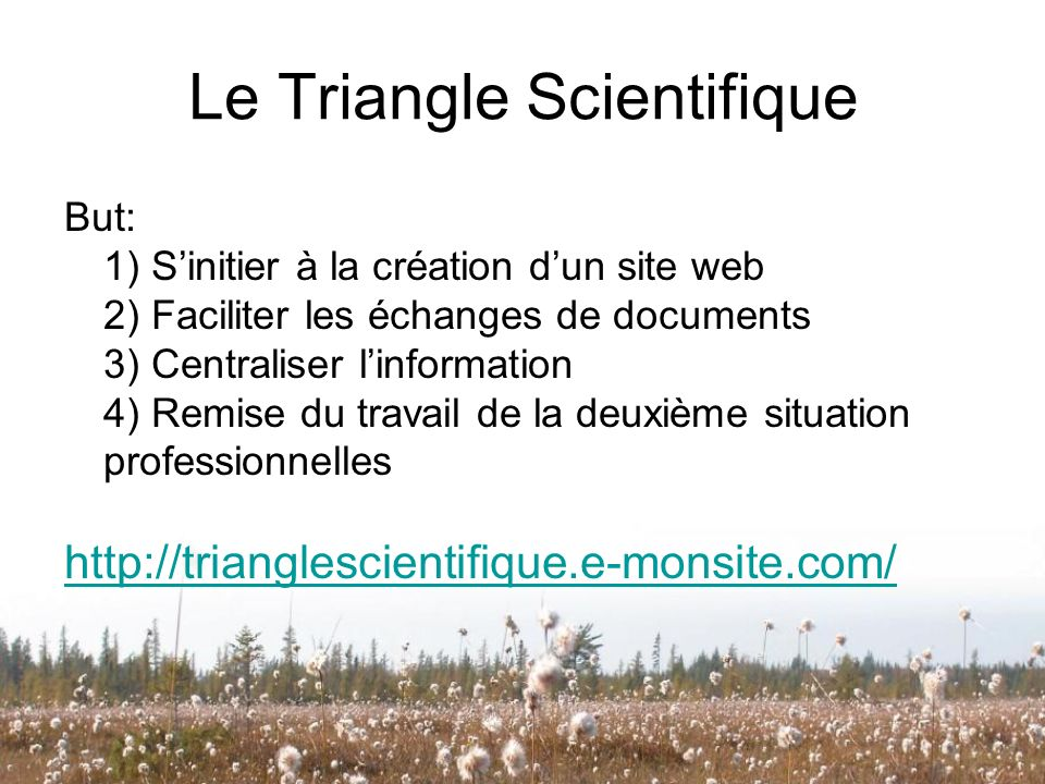Le Triangle Scientifique