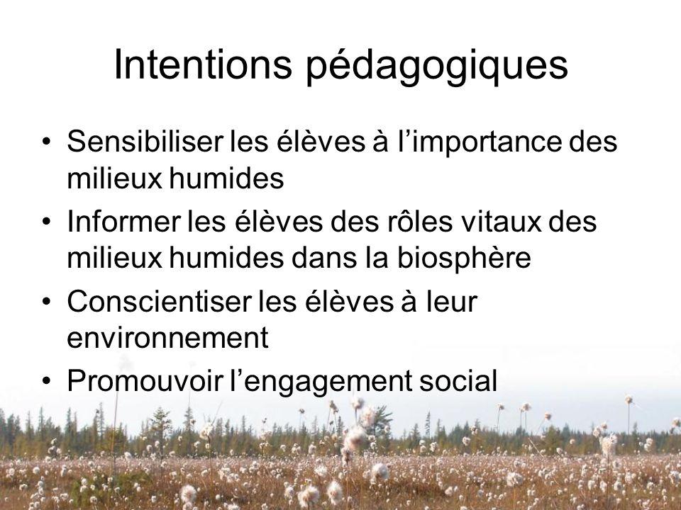 Intentions pédagogiques