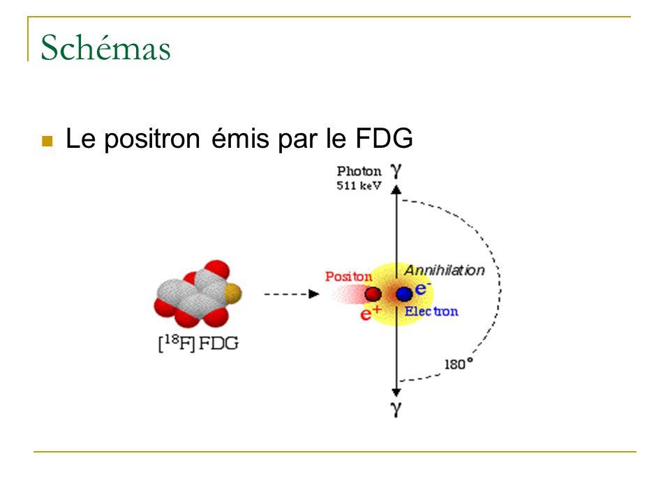 Schémas Le positron émis par le FDG