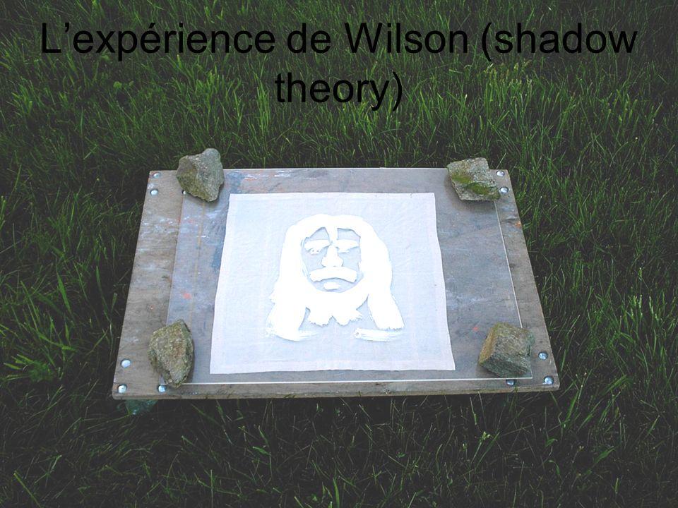 L'expérience de Wilson (shadow theory)