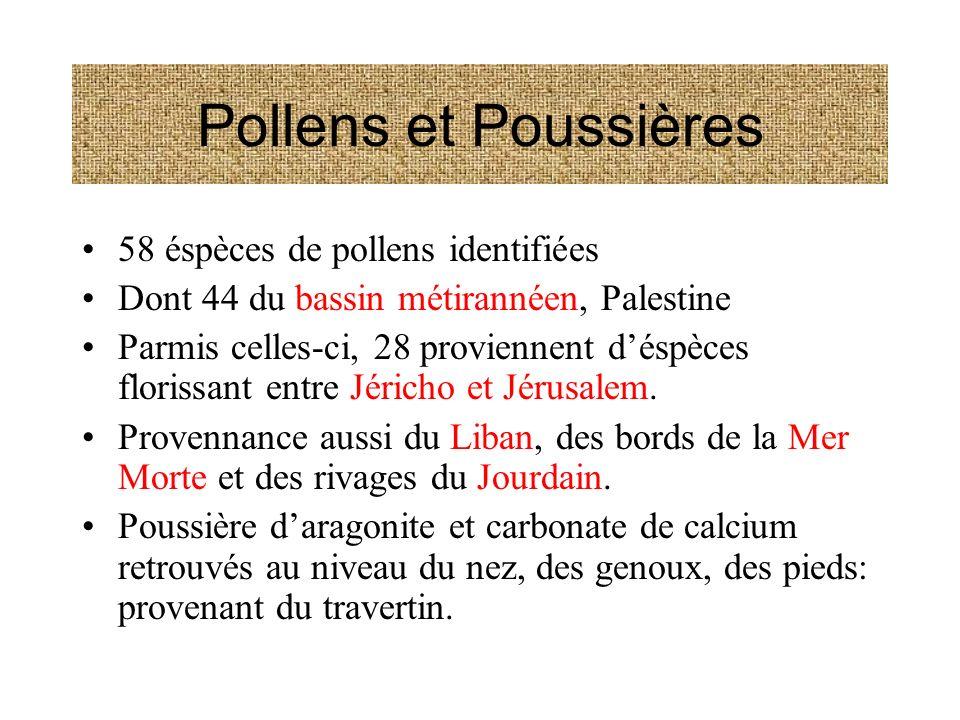 Pollens et Poussières 58 éspèces de pollens identifiées