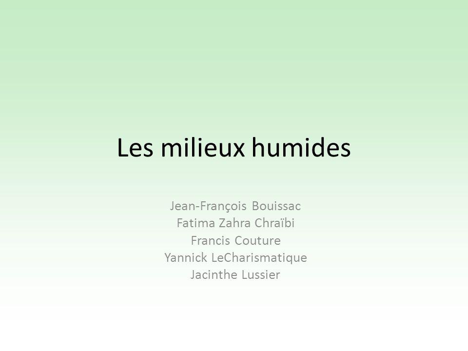 Les milieux humides Jean-François Bouissac Fatima Zahra Chraïbi