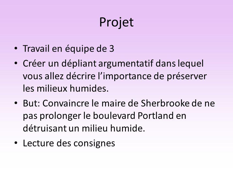 Projet Travail en équipe de 3