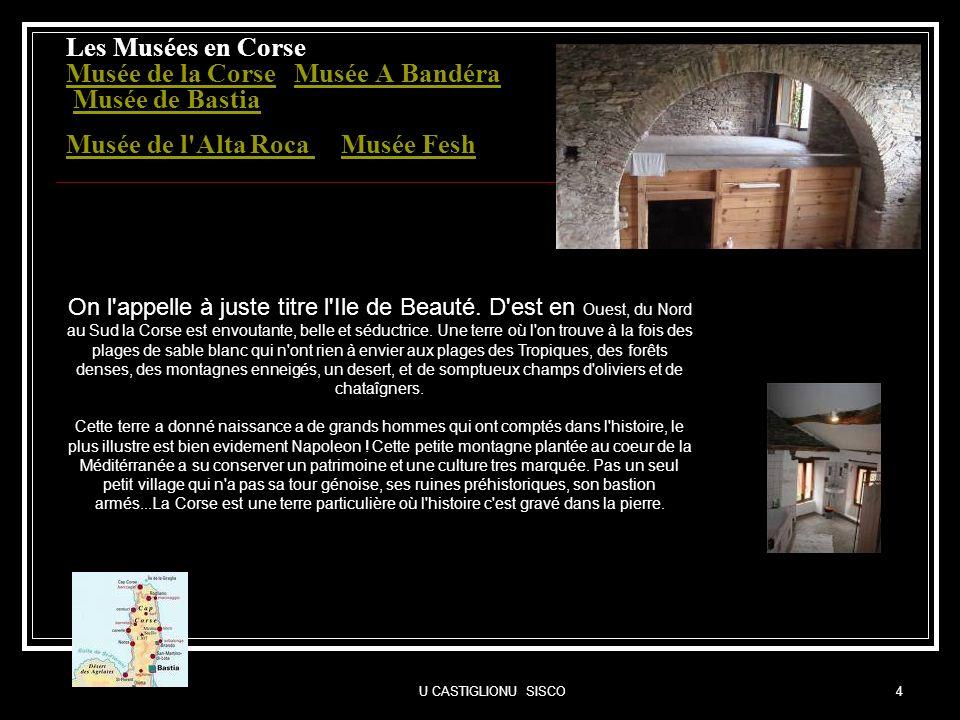 Les Musées en Corse Musée de la Corse Musée A Bandéra Musée de Bastia Musée de l Alta Roca Musée Fesh