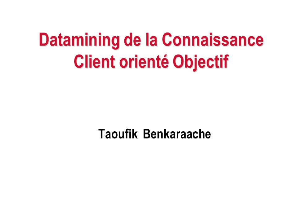 Datamining de la Connaissance Client orienté Objectif