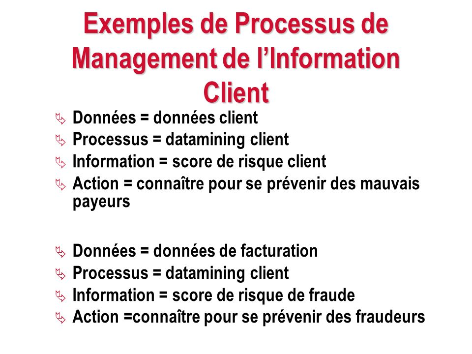 Exemples de Processus de Management de l'Information Client