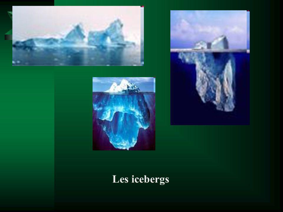 Les icebergs