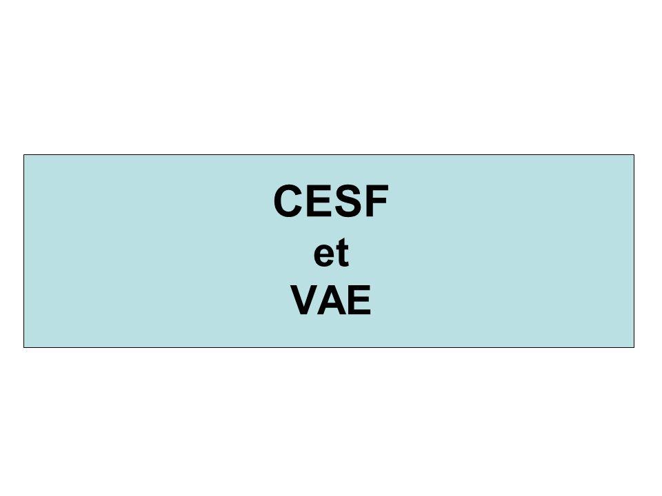 CESF et VAE