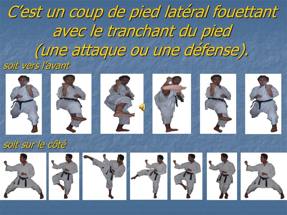C'est un coup de pied latéral fouettant avec le tranchant du pied (une attaque ou une défense).