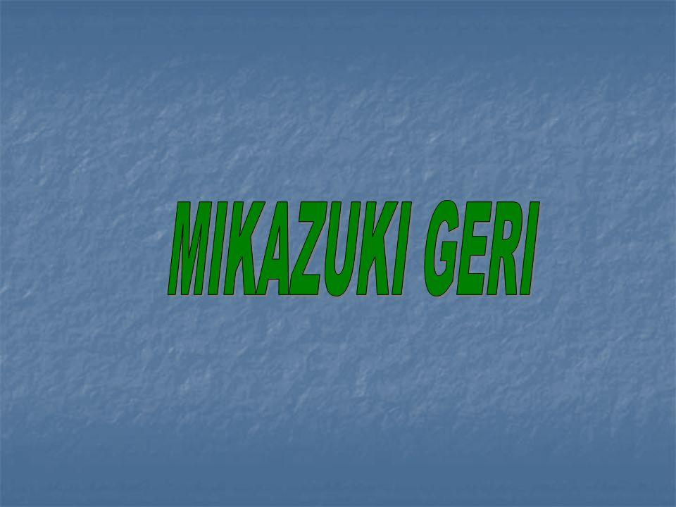MIKAZUKI GERI