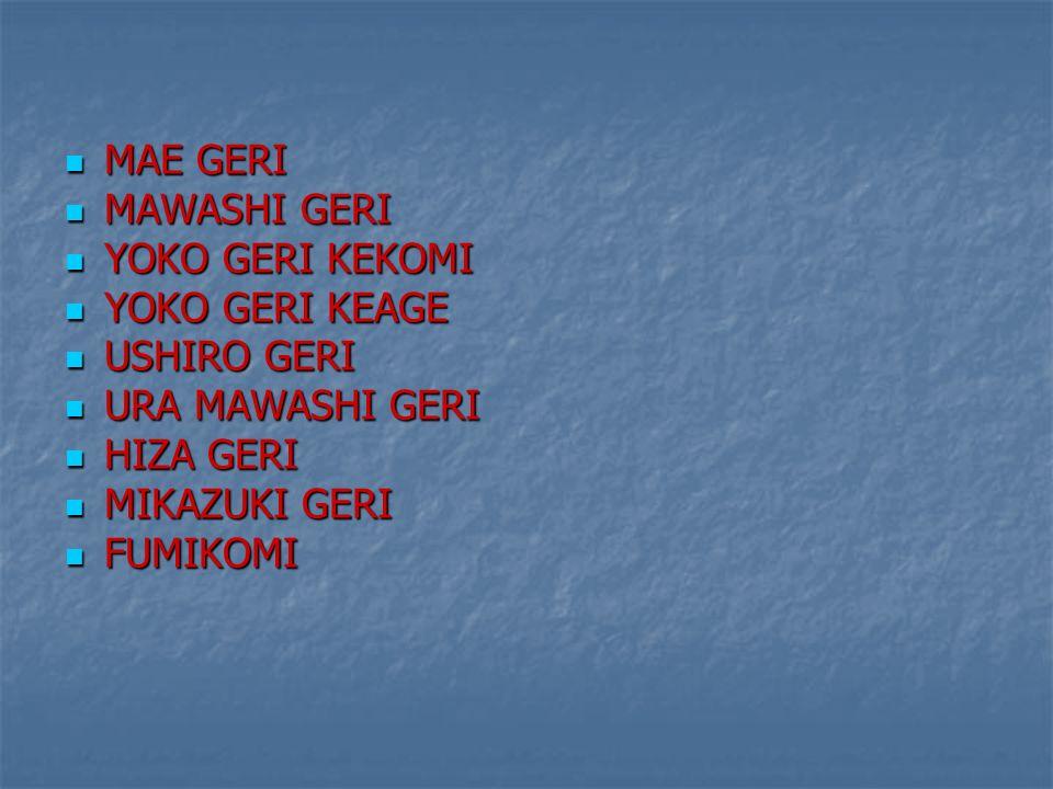 MAE GERI MAWASHI GERI. YOKO GERI KEKOMI. YOKO GERI KEAGE. USHIRO GERI. URA MAWASHI GERI. HIZA GERI.