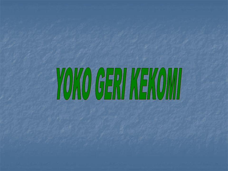YOKO GERI KEKOMI