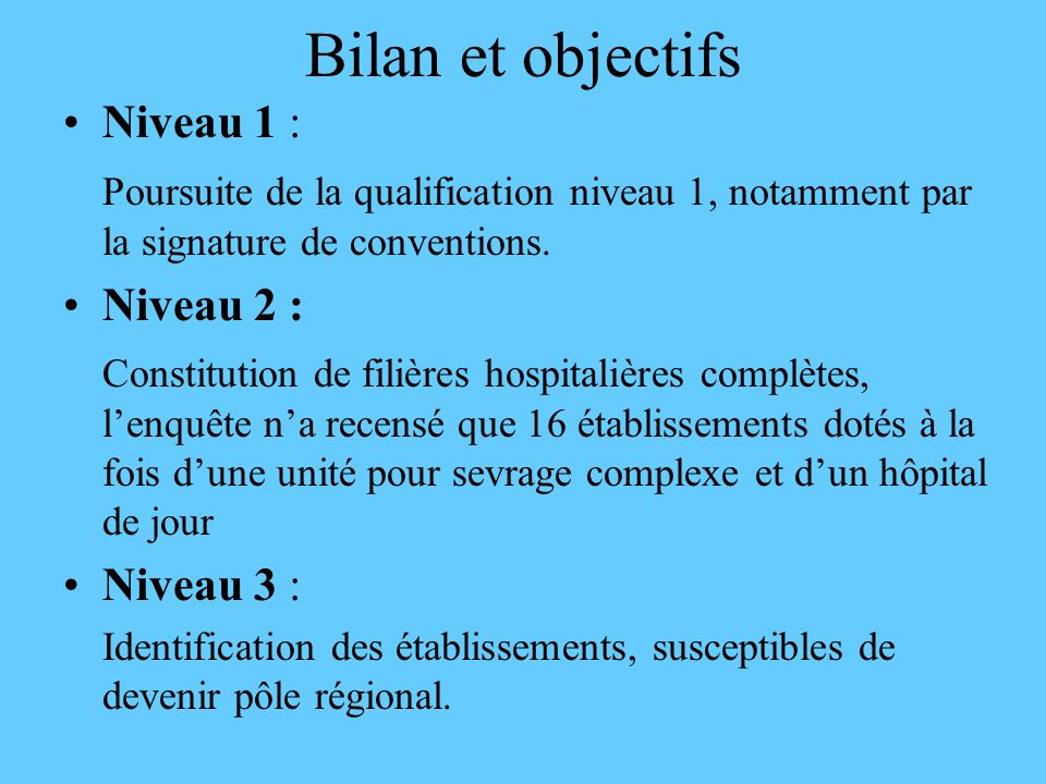 Bilan et objectifs Niveau 1 :