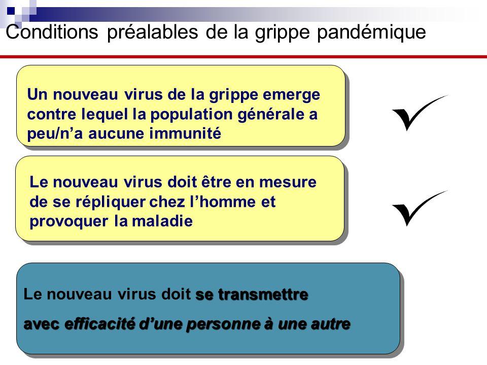 Conditions préalables de la grippe pandémique