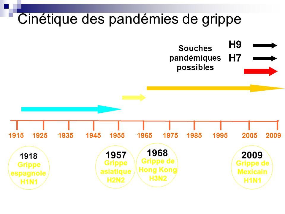 Cinétique des pandémies de grippe