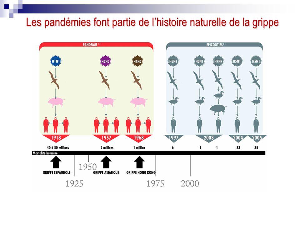Les pandémies font partie de l'histoire naturelle de la grippe