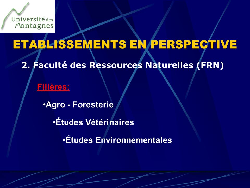 ETABLISSEMENTS EN PERSPECTIVE