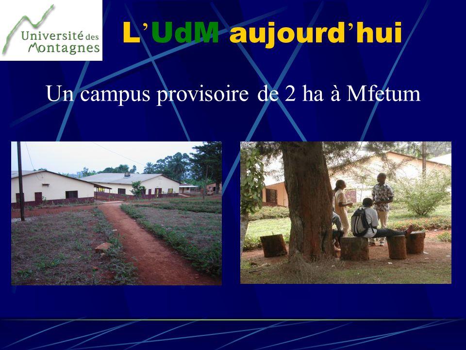 Un campus provisoire de 2 ha à Mfetum