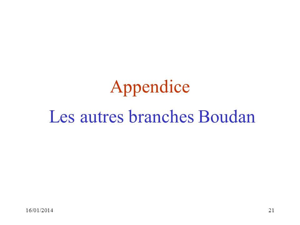 Appendice Les autres branches Boudan