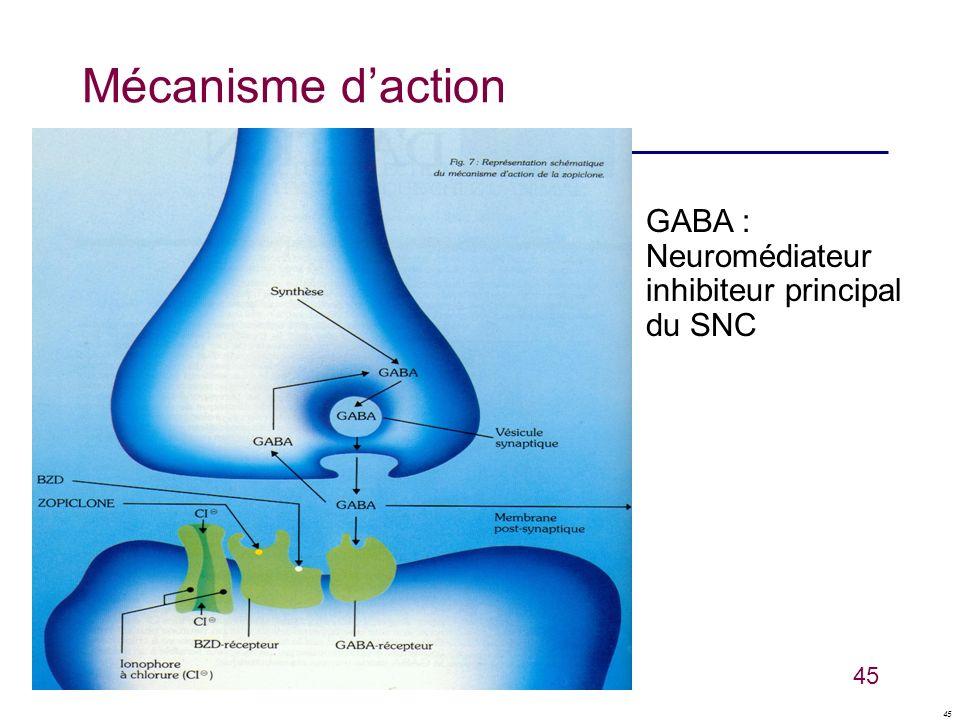 Mécanisme d'action GABA : Neuromédiateur inhibiteur principal du SNC