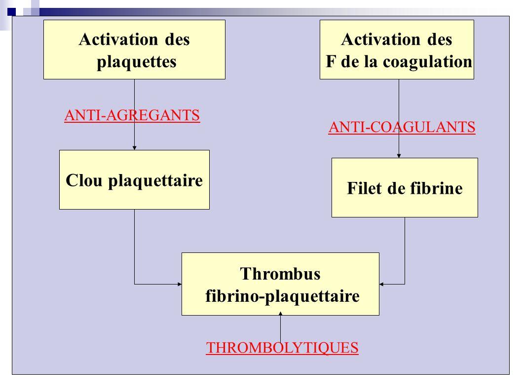 fibrino-plaquettaire