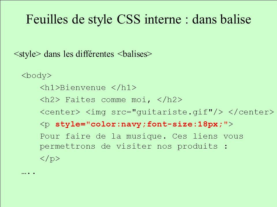Feuilles de style CSS interne : dans balise