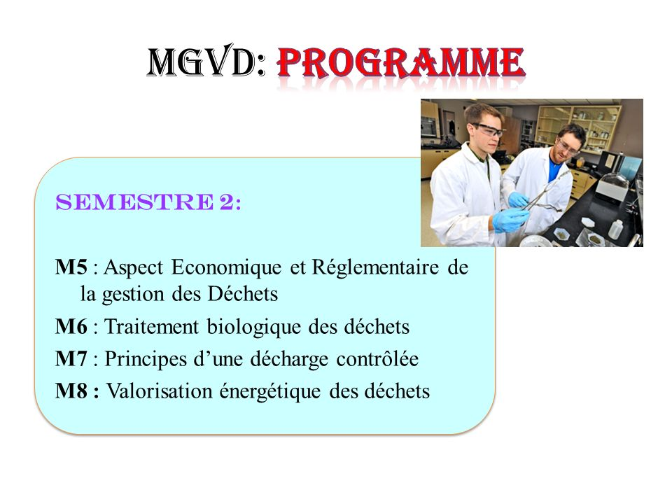 MGVD: Programme