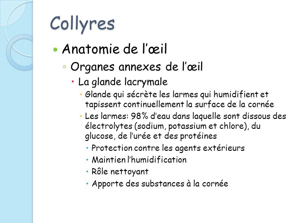 Collyres Anatomie de l'œil Organes annexes de l'œil