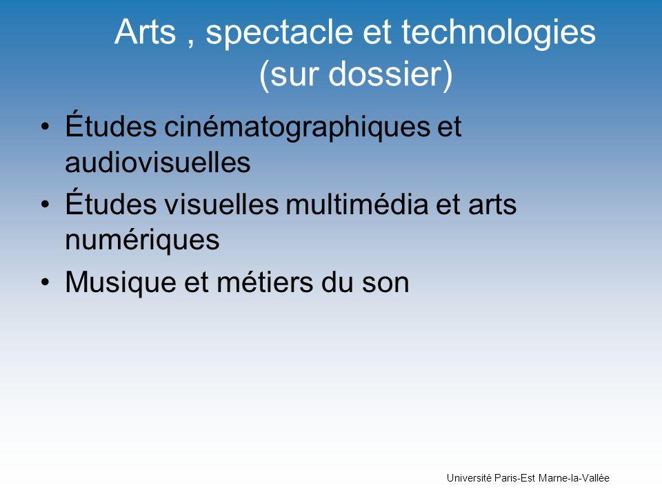 Arts , spectacle et technologies (sur dossier)