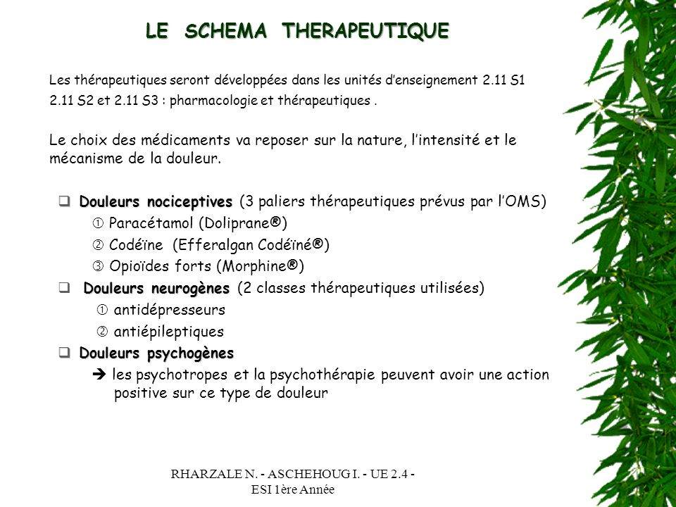 LE SCHEMA THERAPEUTIQUE