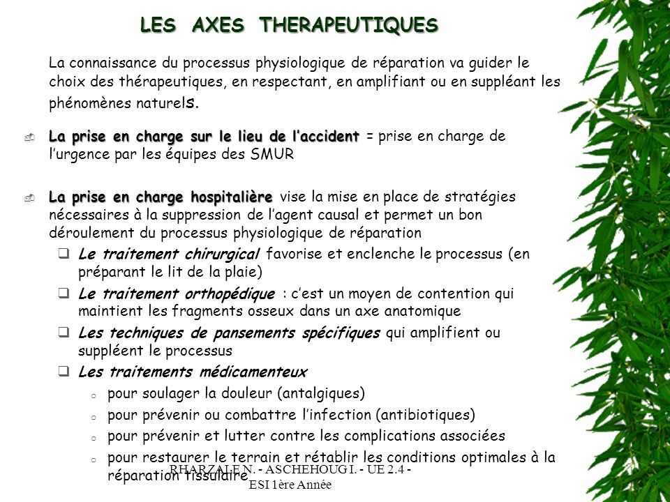 LES AXES THERAPEUTIQUES